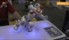 Aydın Zeybeği yapan Robot Nao
