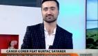 Caner Gürer – Kül Kedisi
