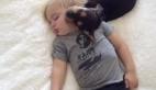 İki Sevimli yavrunun uyku keyfi