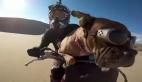 Motor üzerinde yolculuk yapan sevimli köpek