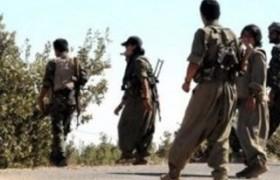 Şırnak'ta 3 terörist beyaz bayrak çekti